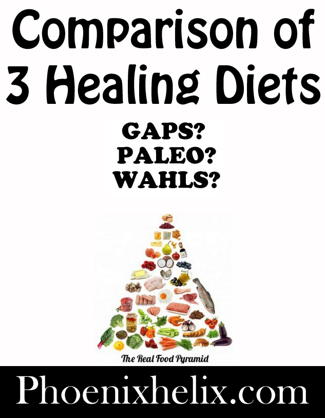 Comparison of 3 Healing Diets | Phoenix Helix