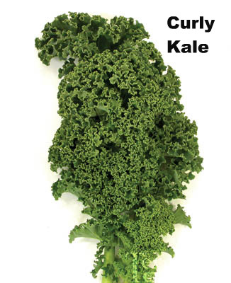photo of curly kale