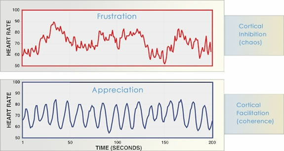 Comparison of the heart rhythm of frustration versus appreciation
