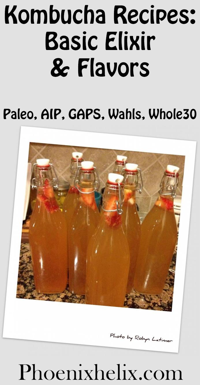 Kombucha Recipes: Basic Elixir & Flavors   Phoenix Helix