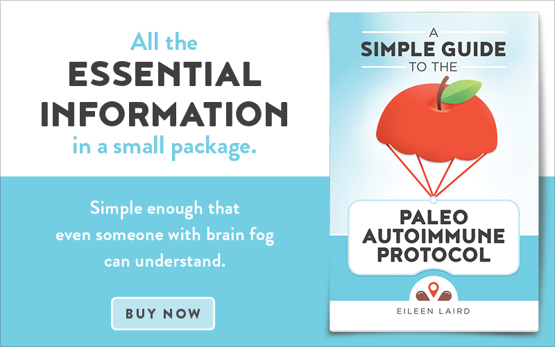 Simple Guide to the Paleo Autoimmune Protocol (book)
