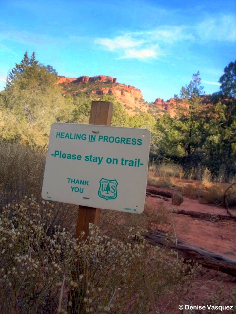 US Forest Service Sign that says: Healing in progress. Please stay on trail.