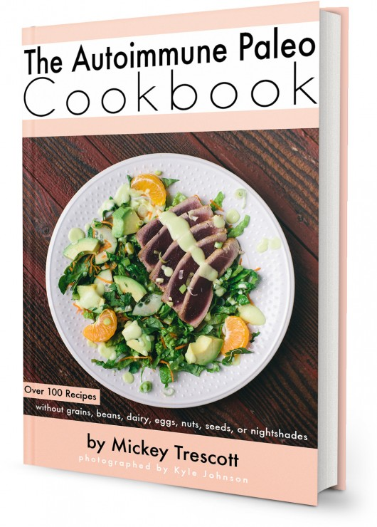 Autoimmune Paleo E-Cookbook Review, Recipe and Giveaway!