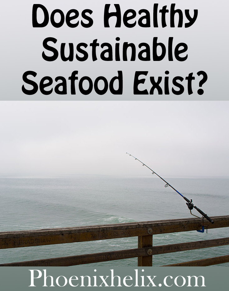 Does Healthy Sustainable Seafood Exist? | Phoenix Helix