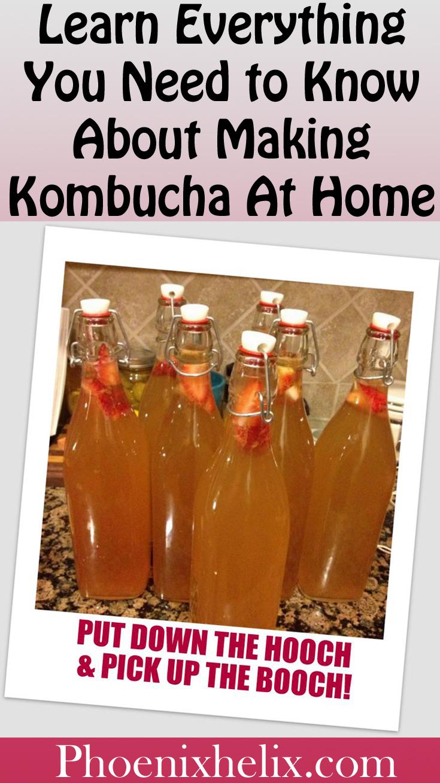 Kombucha Series | Phoenix Helix