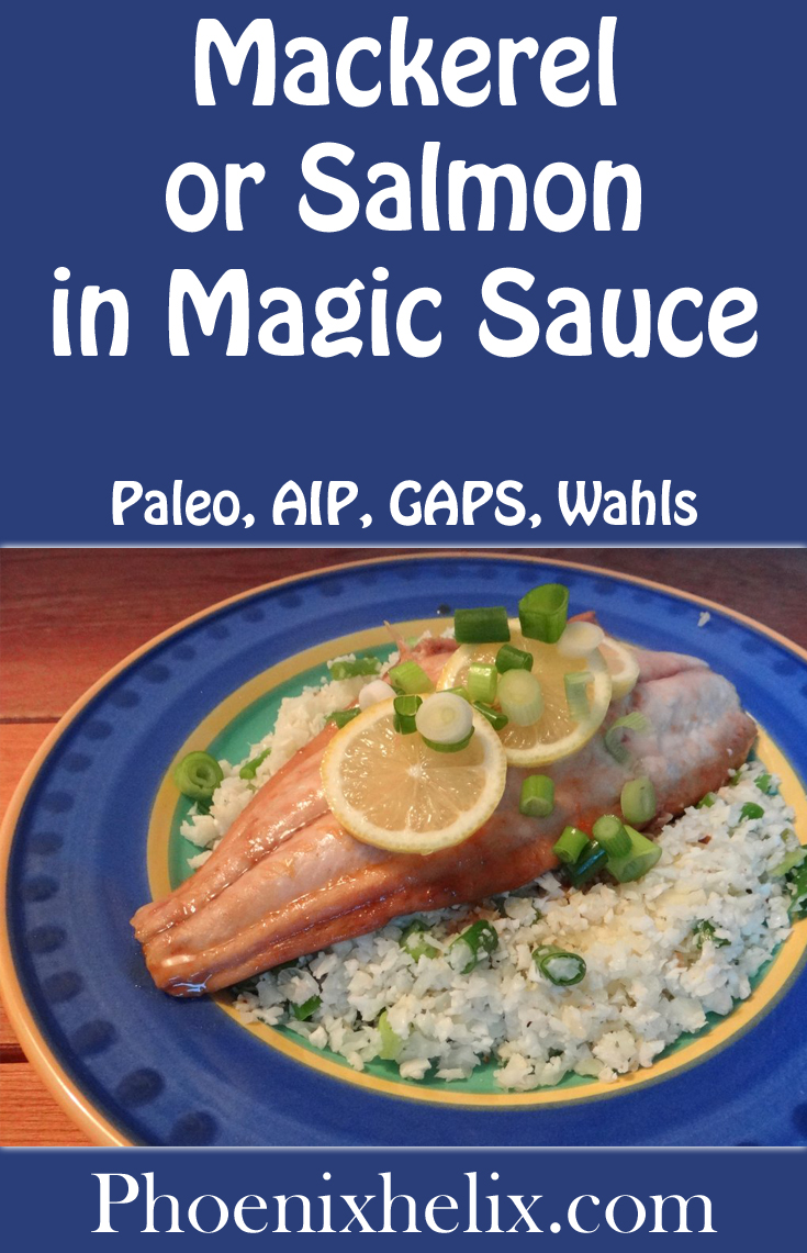 Mackerel or Salmon in Magic Sauce | Phoenix Helix