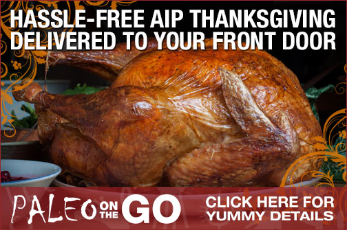 Paleo on the Go Thanksgiving Meal Delivered