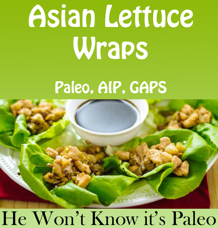 Sample Recipe from the AIP Cookbook: He Won't Know It's Paleo