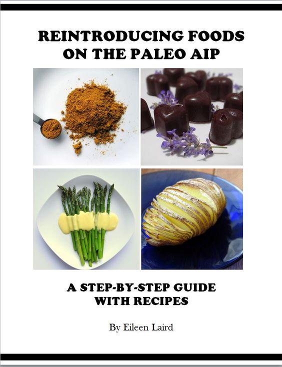 Paleo AIP Reintroduction Guide   Phoenix Helix
