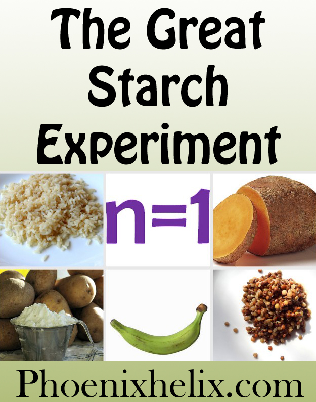 The Great Starch Experiment | Phoenix Helix