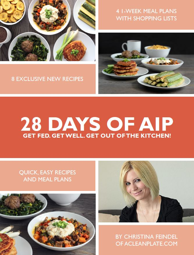 AIP Meal Plan Review and Giveaway | Phoenix Helix