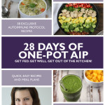 28 Days of One-Pot AIP