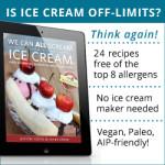 AIP Ice Cream Cookbook