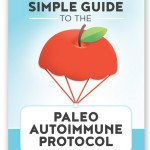Simple Guide to the AIP