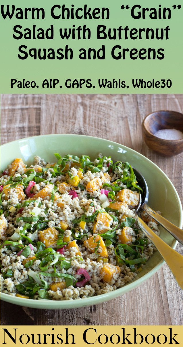 Sample Recipe from the Paleo AIP Cookbook: Nourish | Phoenix Helix