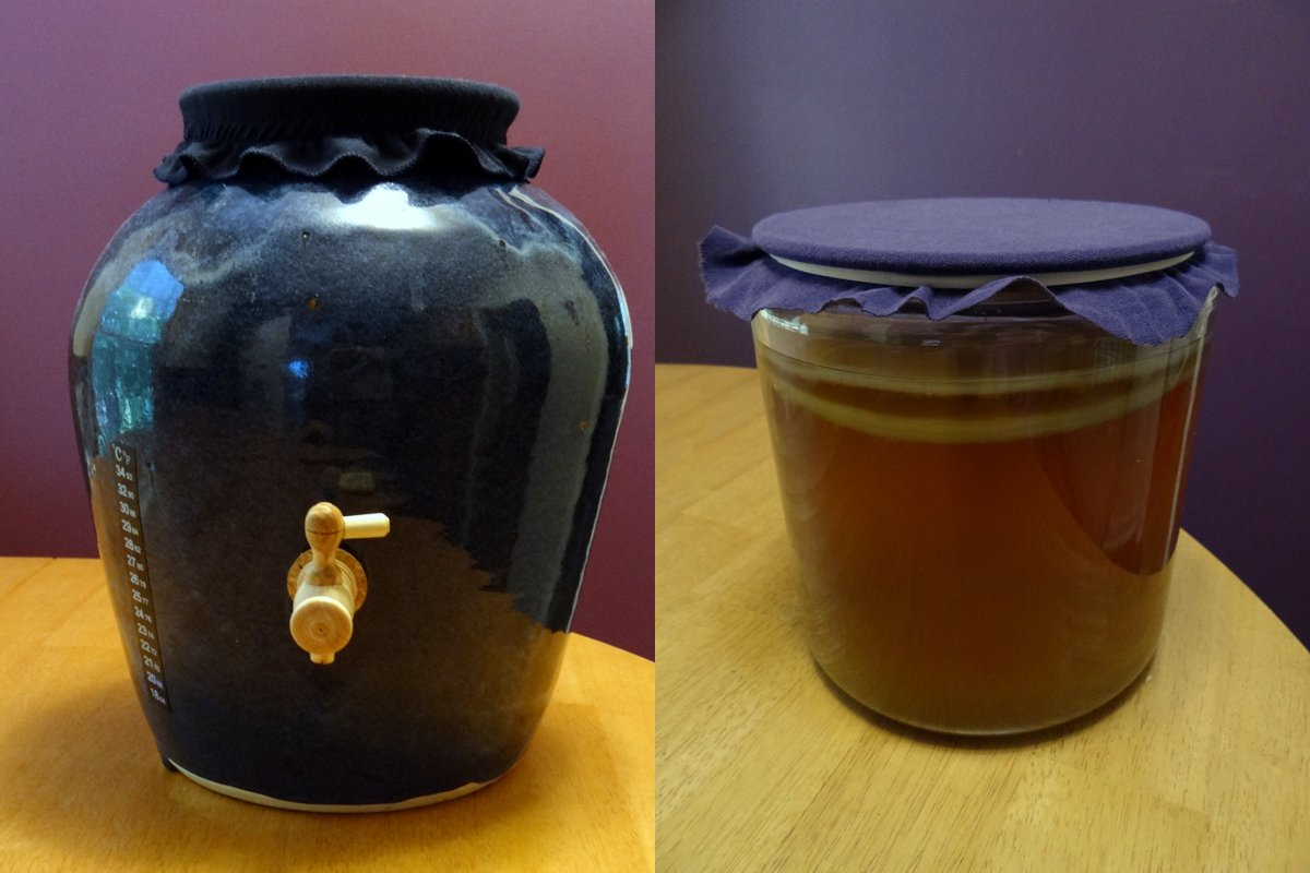 Continuous Brew Kombucha vs Batch Brew. Which is Better? | Phoenix Helix