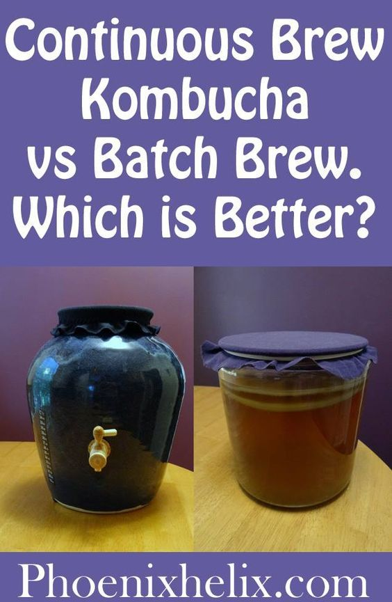 Continuous Brew Kombucha vs. Batch Brew. Which is Better? | Phoenix Helix