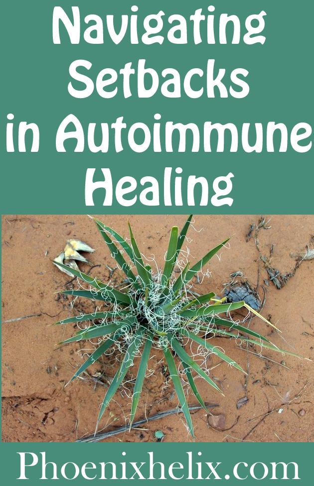 Navigating Setbacks in Autoimmune Healing | Phoenix Helix