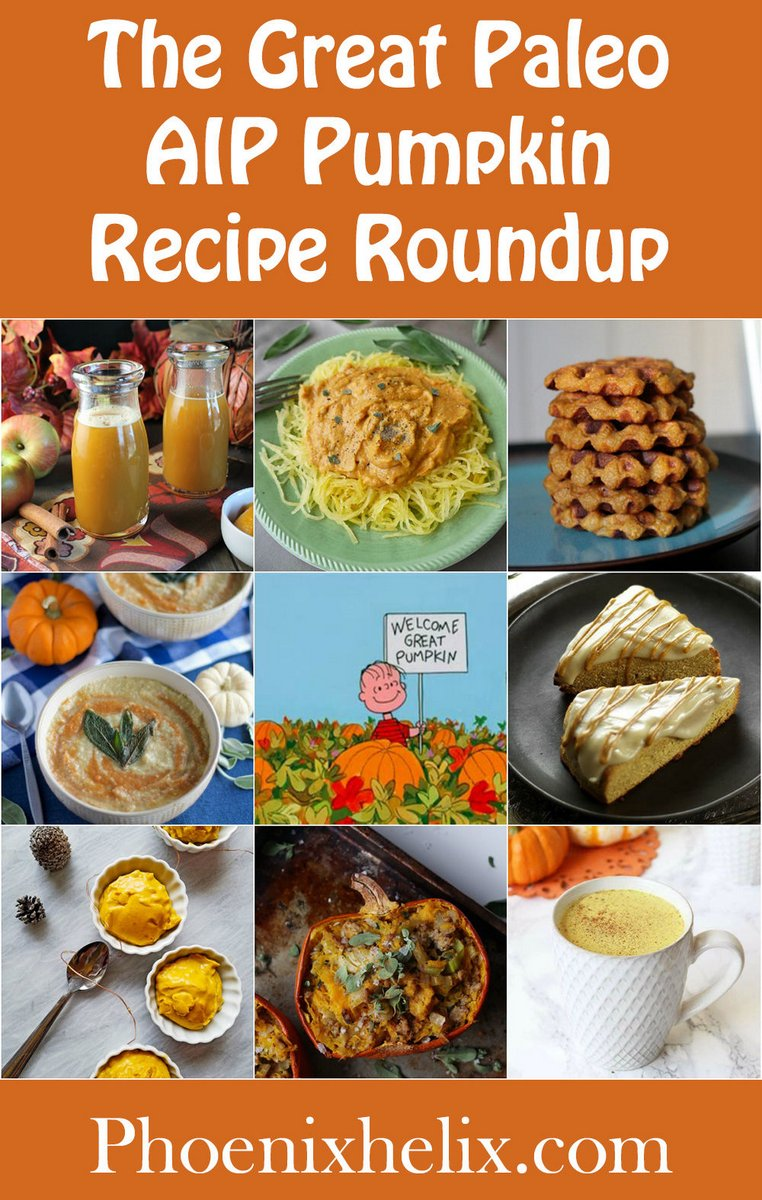 The Great Paleo AIP Pumpkin Recipe Roundup (80+ Recipes!) | Phoenix Helix