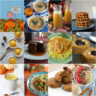 The Great Paleo AIP Pumpkin Recipe Roundup 100 Recipes! | Phoenix Helix