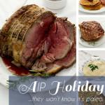 AIP Holiday Cookbook