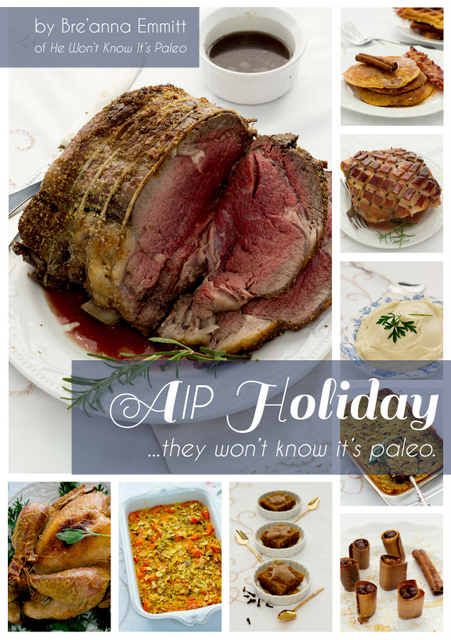 AIP Holiday Cookbook