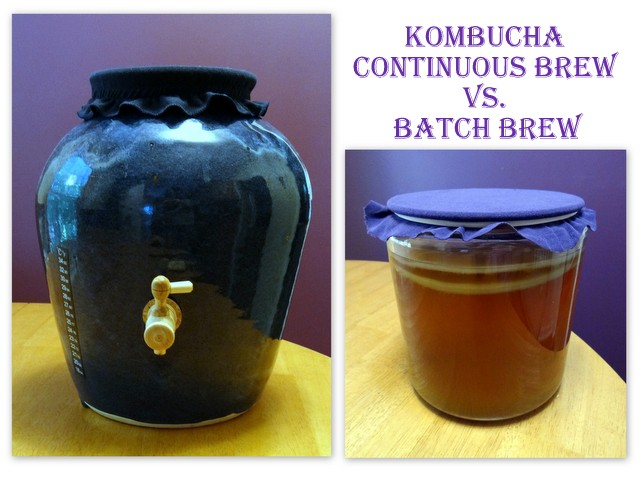 Continuous Brew Kombucha vs Batch Brew. Which is Better?