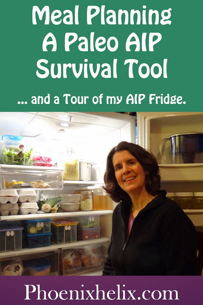 Meal Planning - A Paleo AIP Survival Tool | Phoenix Helix
