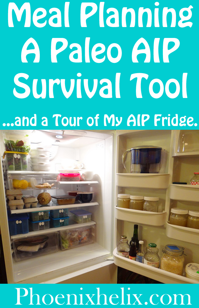 Meal Planning A Paleo AIP Survival Tool | Phoenix Helix