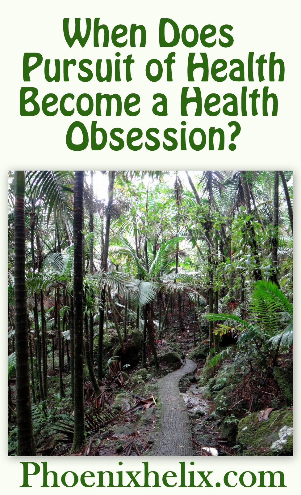 When Does Pursuit of Health Become a Health Obsession?   Phoenix Helix