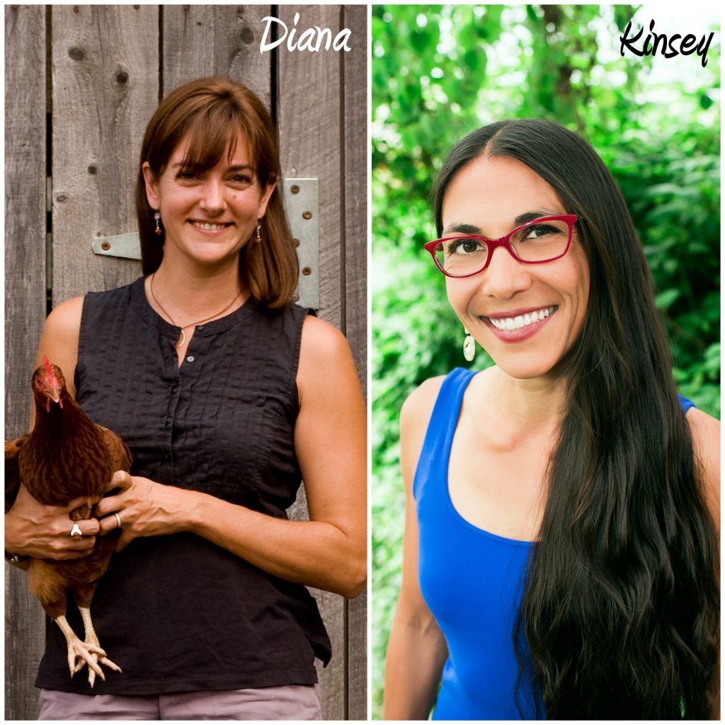 Episode 60 of the Phoenix Helix Podcast: Transitioning from Vegetarian to Paleo