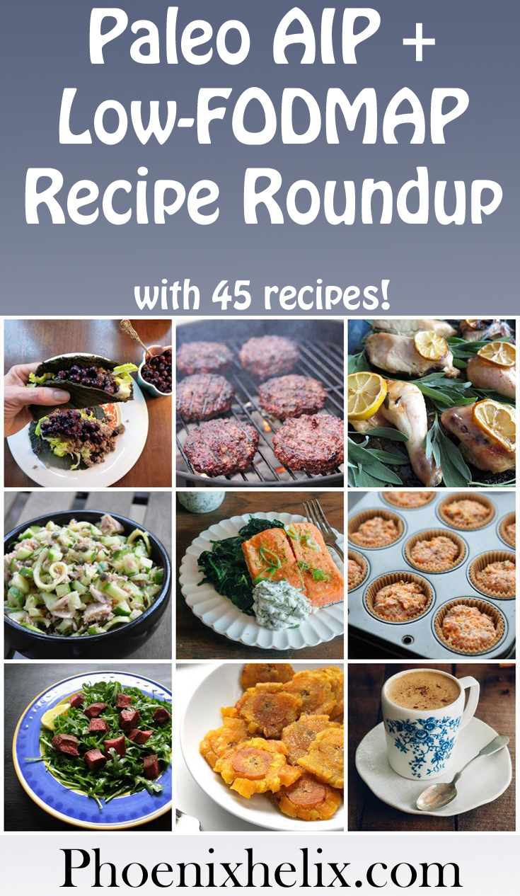 Paleo AIP + Low-FODMAP Recipe Roundup (45 Recipes!) | Phoenix Helix