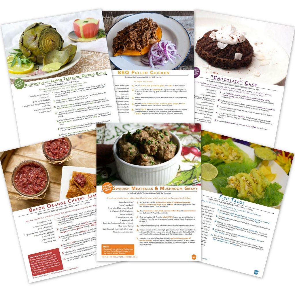 The Paleo AIP Instant Pot Cookbook   A Community Cookbook
