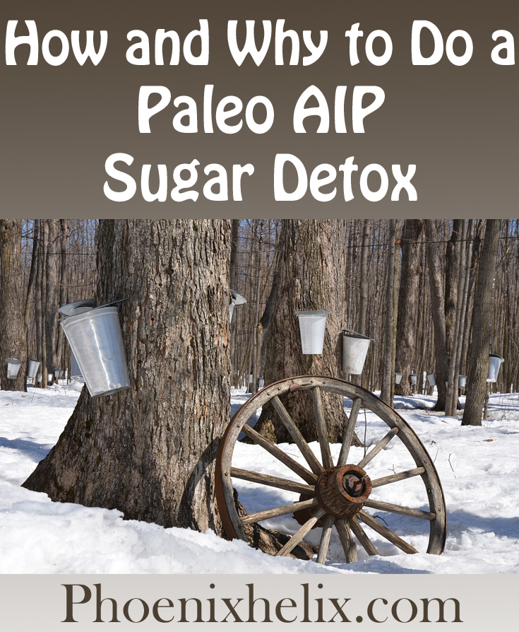 How and Why to do a Paleo AIP Sugar Detox | Phoenix Helix