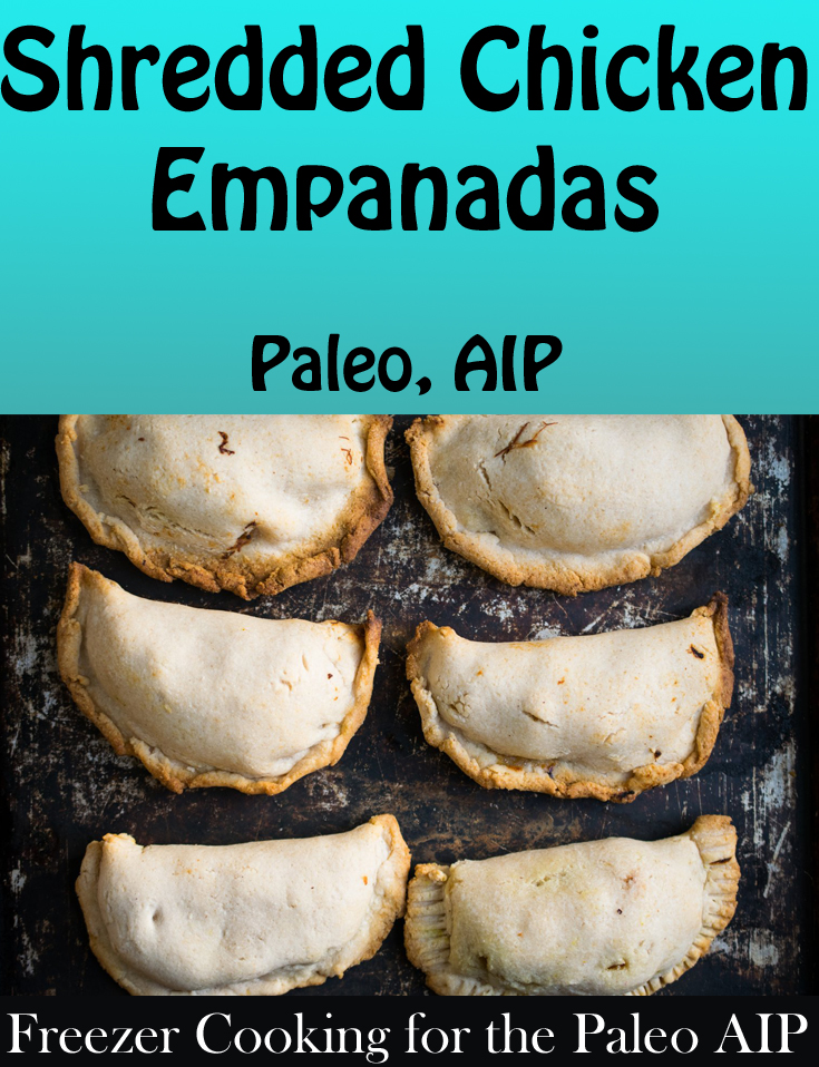Freezer Cooking for the Paleo AIP Cookbook Review & Sample Recipe for Shredded Chicken Empanadas | Phoenix Helix