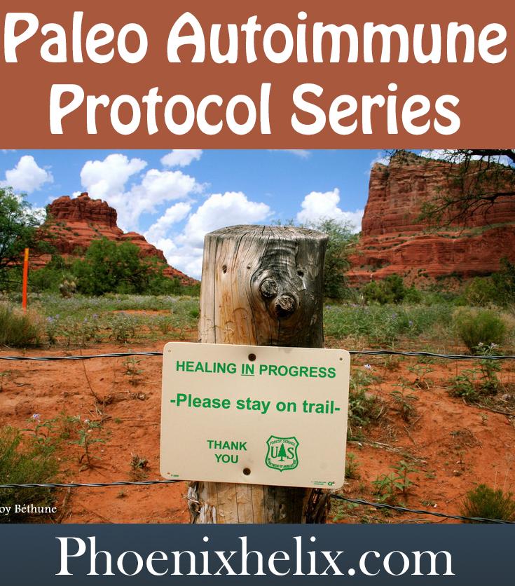 Paleo Autoimmune Protocol Series | Phoenix Helix