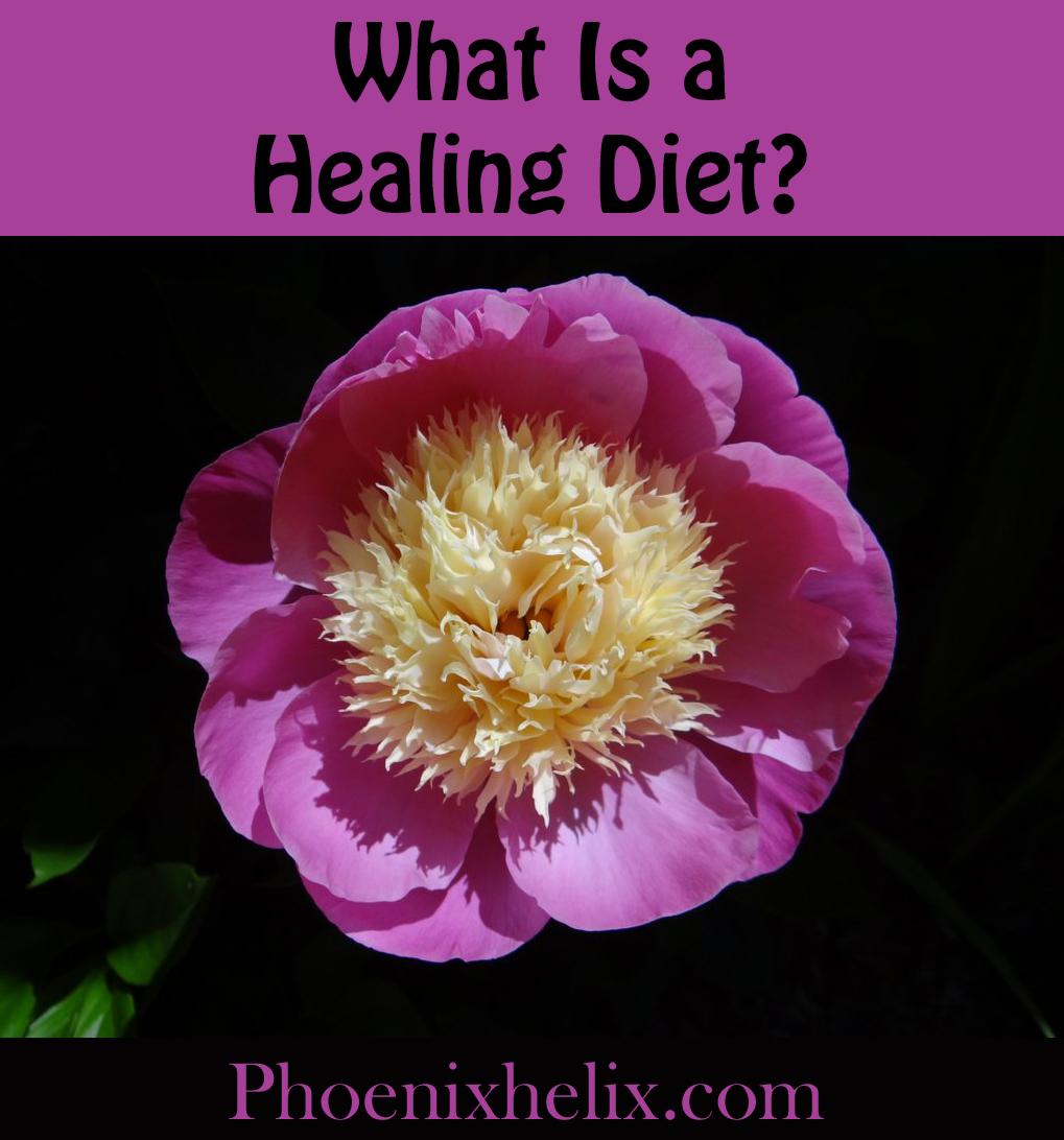 Healing Diet Details | Phoenix Helix