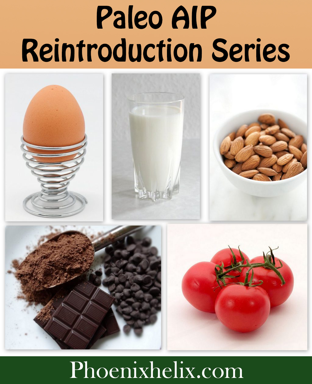 Paleo AIP Reintroduction Series | Phoenix Helix