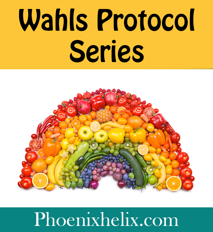 Everything you need to know about the Wahls Protocol | Phoenix Helix