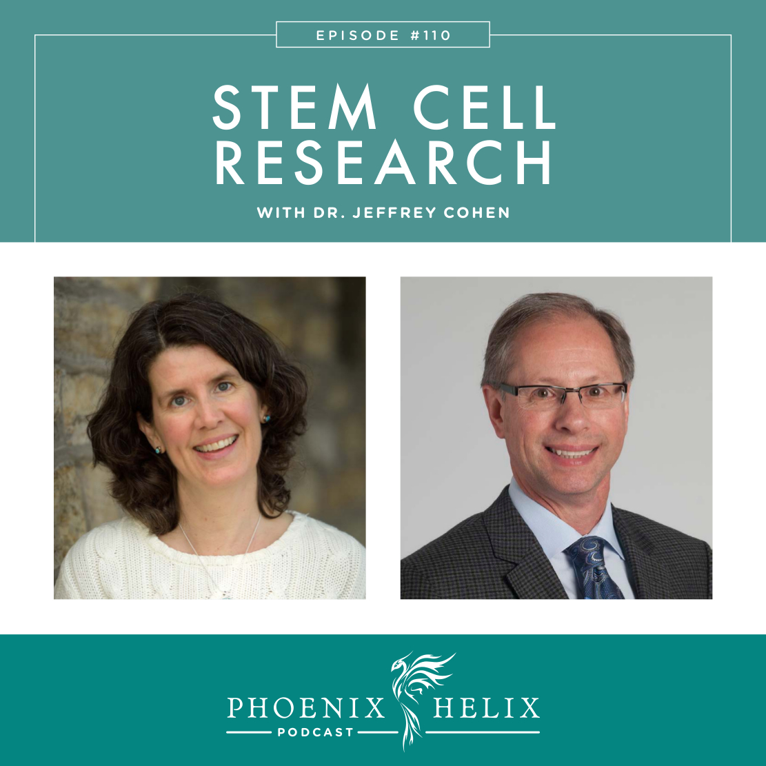 Stem Cell Research with Dr. Jeffrey Cohen | Phoenix Helix Podcast