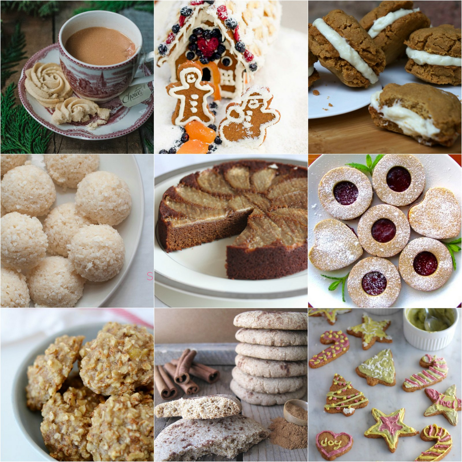 50 Paleo AIP Christmas Cookies & Holiday Treats | Phoenix Helix