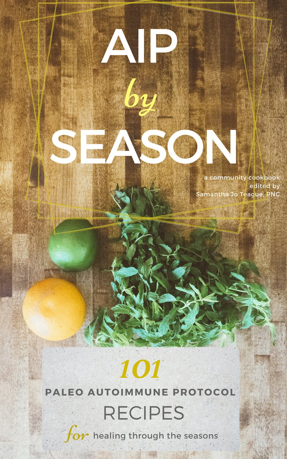AIP By Season Cookbook Review & Sample Recipe | Phoenix Helix