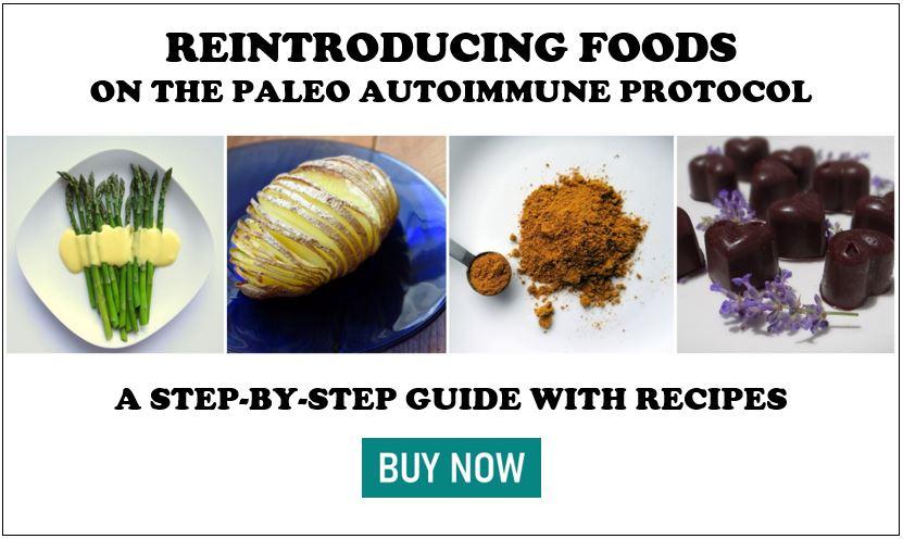 Paleo AIP Reintroduction Guide Ebook | Phoenix Helix