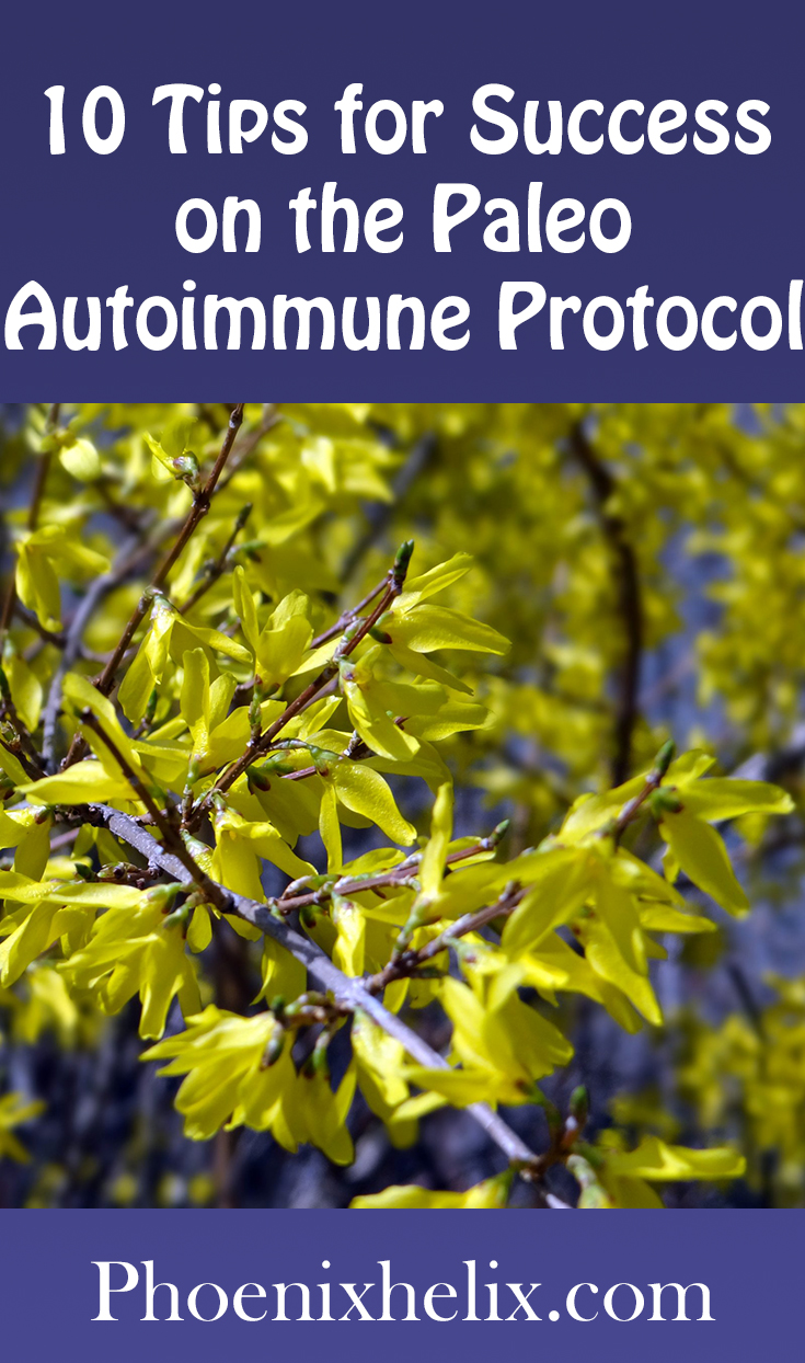 10 Tips for Success on the Paleo Autoimmune Protocol (AIP) | Phoenix Helix